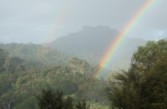 A rainbow over the Tapu Valley, Coromandel.