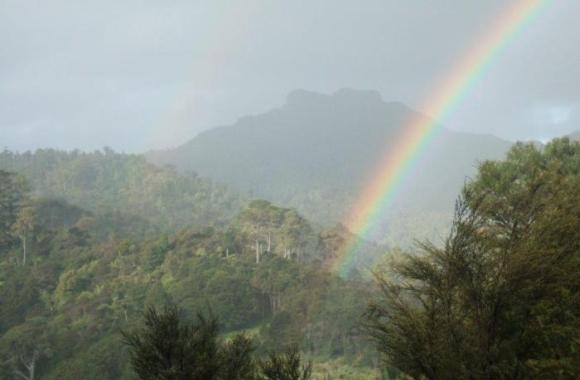 A rainbow over the Tapu Valley, Coromandel.