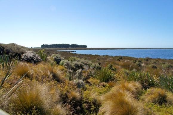 Waituna Lagoon, Southland, New Zealand.