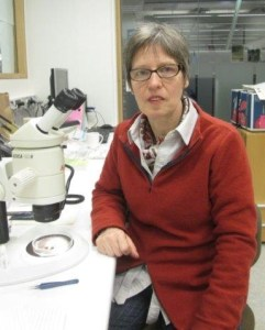 Karin working in the Science Lab at DOC's National Office.