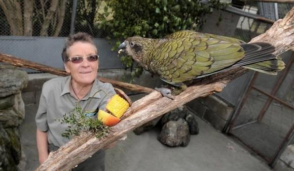 Carol feeding a kea.
