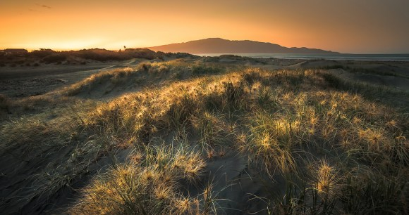 Kapiti Island. Photo: Bernardo Velasco | CC BY-NC-SA 2.0.