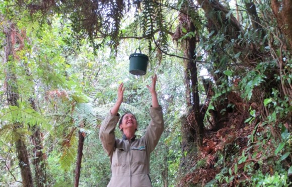 Ranger Collette Wi testing a new geocache being put out on a track for Conservation Week.