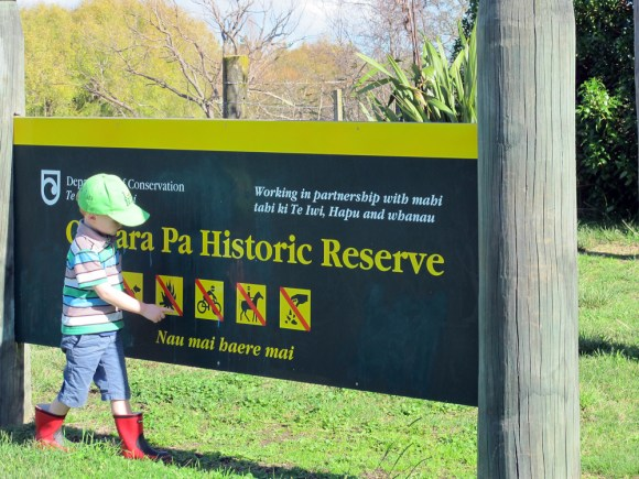 Young boy pointing to the safety icons on the Otatara Pa Historic Reserve sign. Photo: Ellen Fitzsimons.