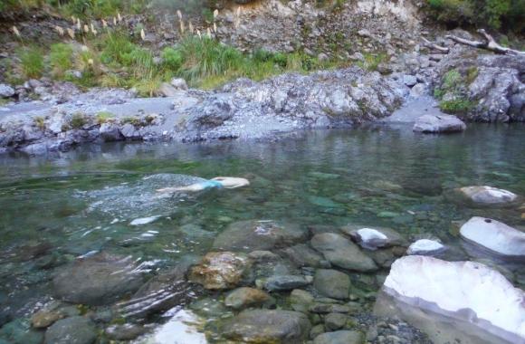 Swimming in the Ruamahanga river.