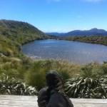 The view from Maungahuka Hut.