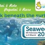 Seaweek 2015