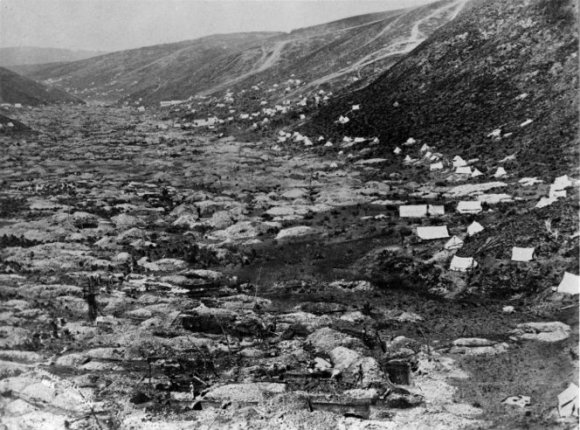 Goldfield at Gabriels Gully in 1862.