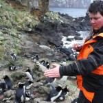 Counting penguins on Antipodes Island. Photo: Kathryn Pemberton.