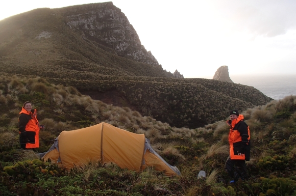 Camping on Antipodes Island for penguin survey. Photo by Alison Ballance.