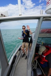 Recording data on the Māui dolphin population estimate.