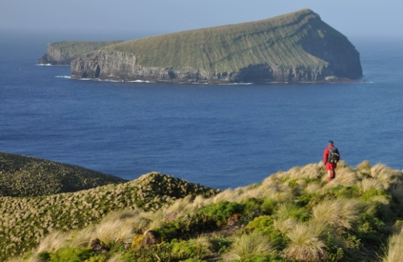 Looking out from Antipodes Island to the mouse free Bollons Island.