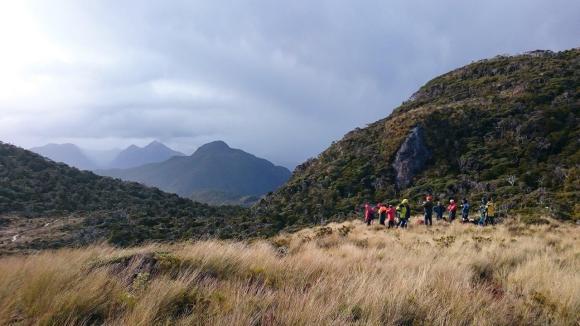 Passengers take part in kiwi telemetry tracking on Anchor Island. Photo: Richard Parkinson.