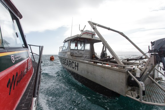 DOC vessel Mataara II and VUW vessel Raukawa Challenger. Photo: Vincent Zintzen
