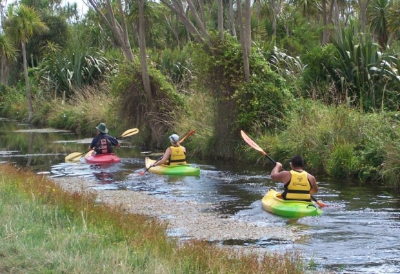 A kayak trail on the Kaituna wetland. Photo: Pete Huggins.