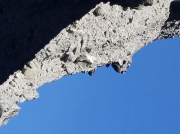 A naturally formed 'gargoyle'.