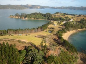 Rotoroa Island before.