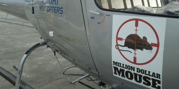 One of the Million Dollar Mouse helicopters.