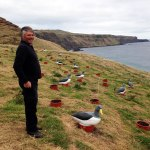 Bruce Tuanui at the DOC Community Fund funded Chathams Island albatross translocation site on South Chathams.