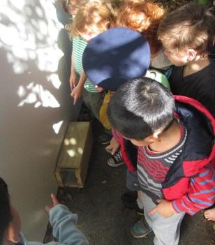 Plimmerton kindy kids pointing out how it's done.