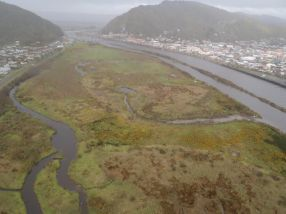 The island in 2011 before restoration began.