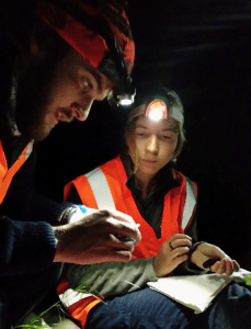 Adam Ross and Natasha Bedford attaching a transmitter to a bat. Bats must weigh over 9 grams before they can take a transmitter. Photo: Bronwyn Slack