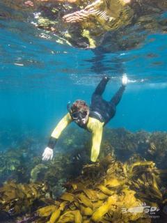 Snorkelling_credit Lorna Doogan (002)