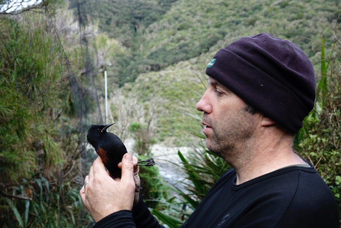 What makes species tick – Brent Beaven
