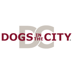 DOGS in the CITY – Blog