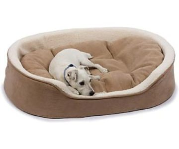 Choosing the best Dog supplies for your pet dog