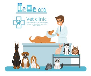 How can you Market your Veterinary Clinic?