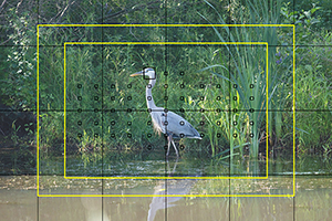 Canon 5DS / 5DS R Experience autofocus viewfinder book manual guide how to tips trick master