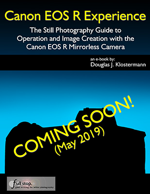 Canon EOS R Experience book manual guide how to tips tricks