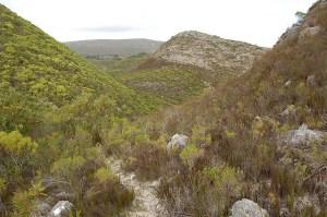 Cederberg Mountain Region of South Africa