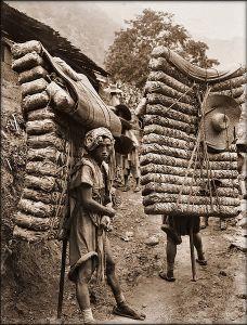 Men working on the Tea Horse Road carrying large bundles of tea.