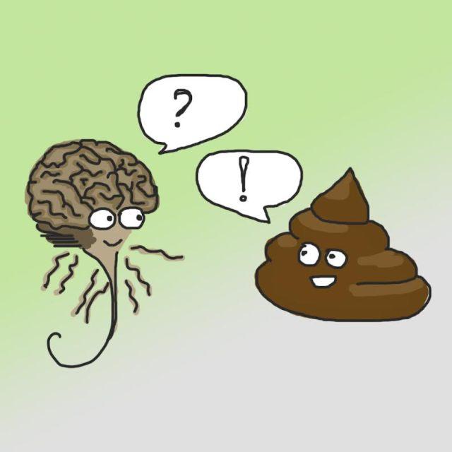 Wat poep ons vertelt over het brein