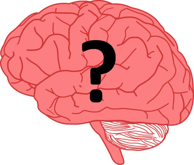 De Neurowetenschap achter Gewoonten