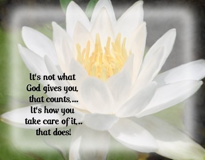 it-s-not-what-god-gives-you-that-countsit-s-how-you-take-care-of-itthat-does-inspirational-quote