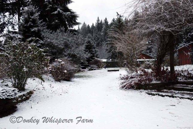 gardenfirstsnnow2013