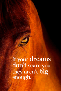 ifyourdreamsdontscare