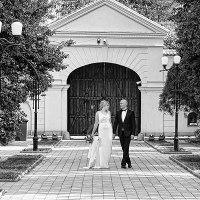 fotografii de nunta in judetul Iasi