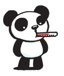 Panda with thermometer in its mouth.