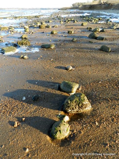 photograph of stones along the shoreline
