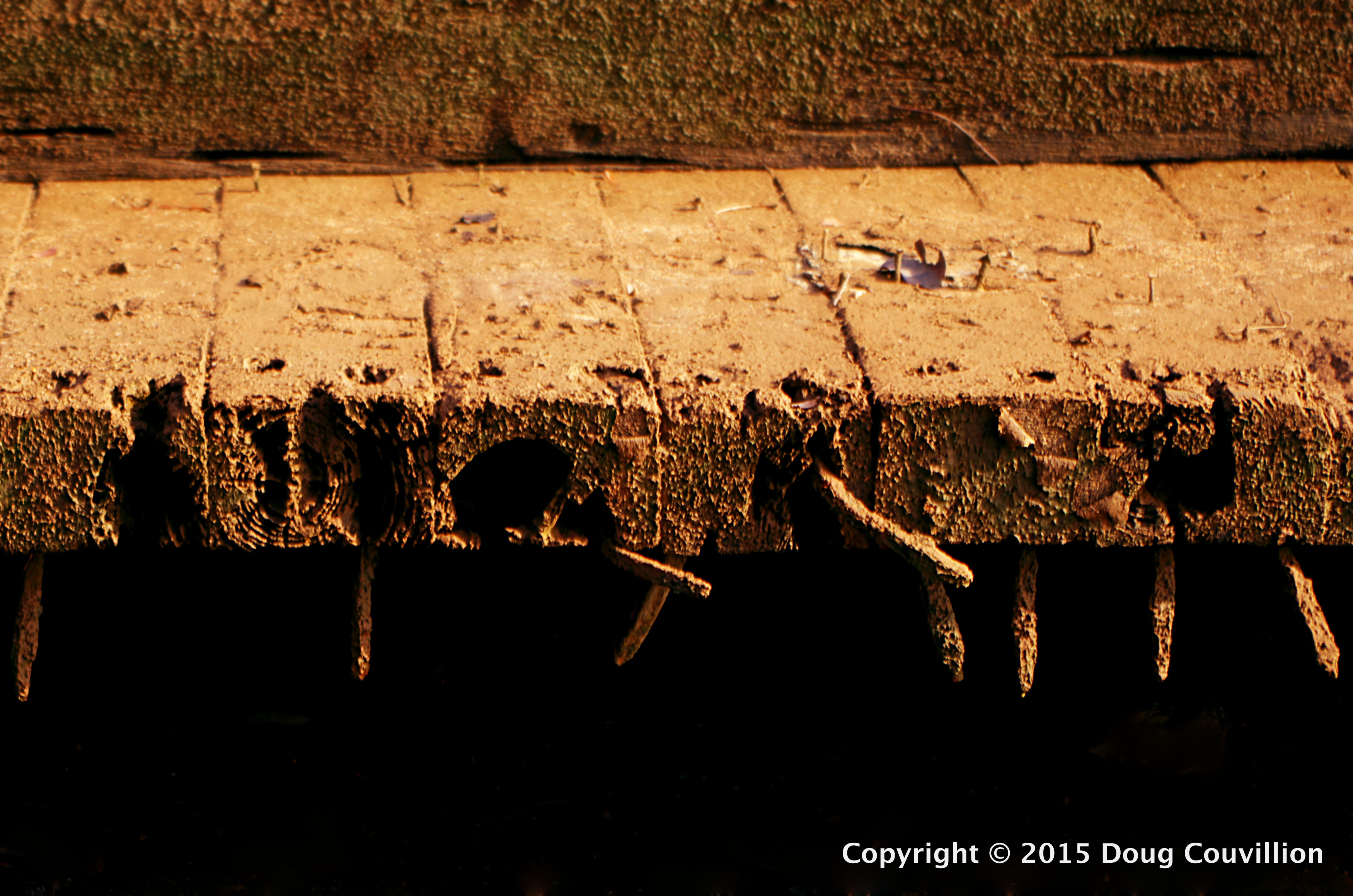 photograph of old muddy decking with large nails