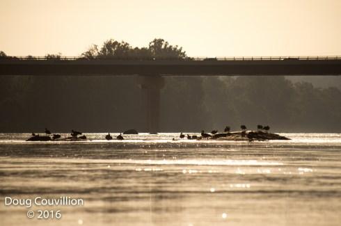 photograph of Richmond's Huguenot Bridge taken from the James River