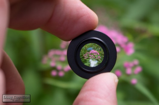 photograph of an iPhone lens attachment with flowers behind it. Taken by Doug Couvillion and posted to http://blog.dougcouvillion.com