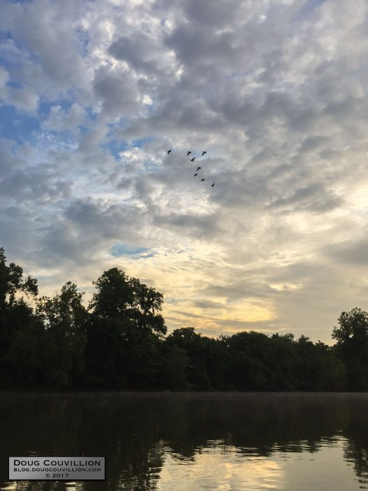 photograph of a flock of Canada Geese flying above the James River at dawn by Doug Couvillion