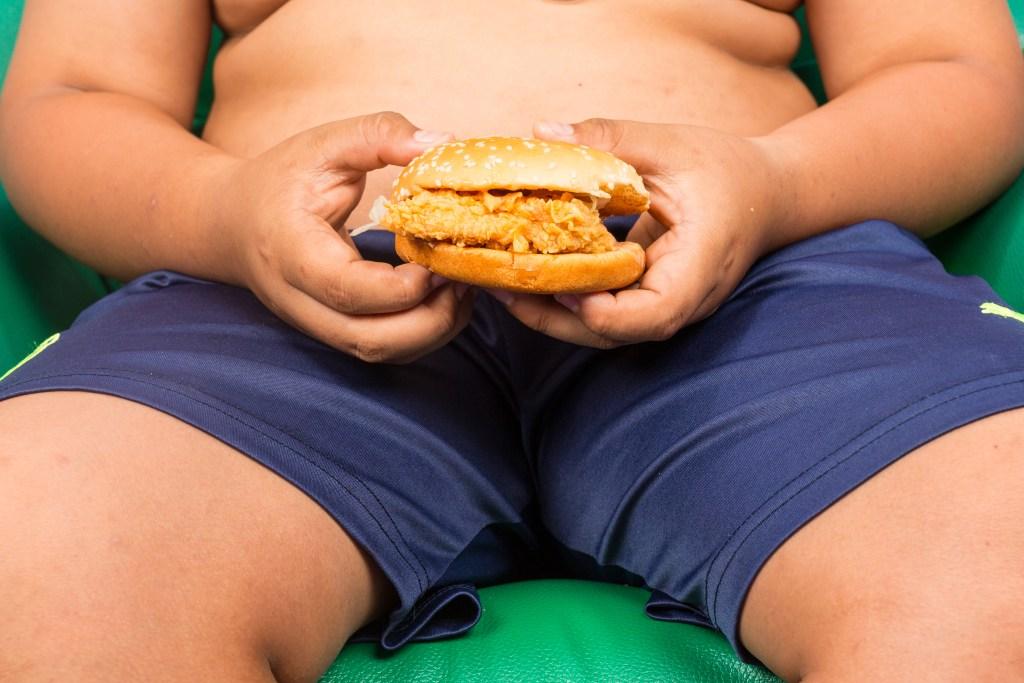 Obesidade Infantil : como controlar a alimentação do seu filho