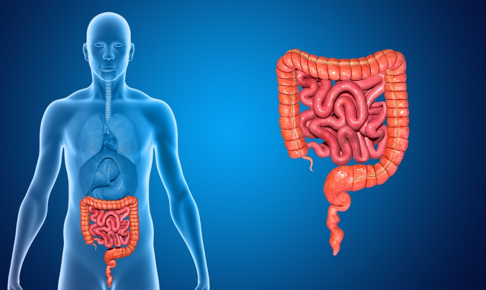 Retocolite ulcerativa: o que é e como tratar?