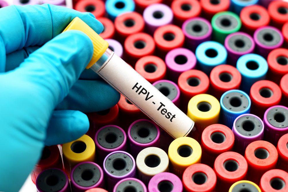 HPV: transmissão, sintomas, tratamento e vacinação